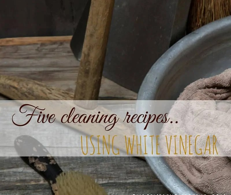 5 DIT Cleaning Recipes Using Vinegar