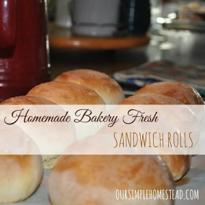 Homemade Bakery Fresh Sandwich Rolls