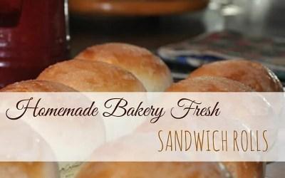 Homemade Bakery Fresh Sandwich Rolls