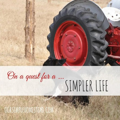 Quest for a Simpler Life