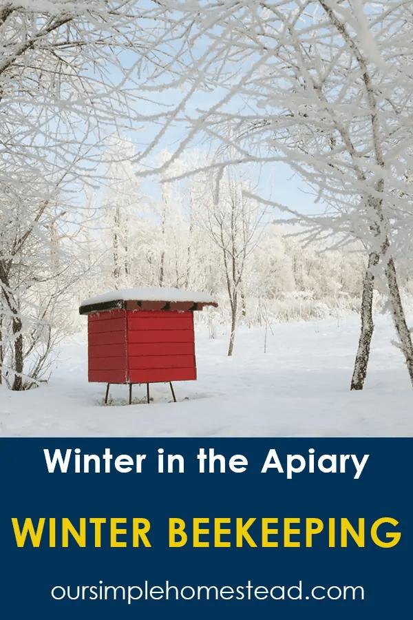 winter beekeeping