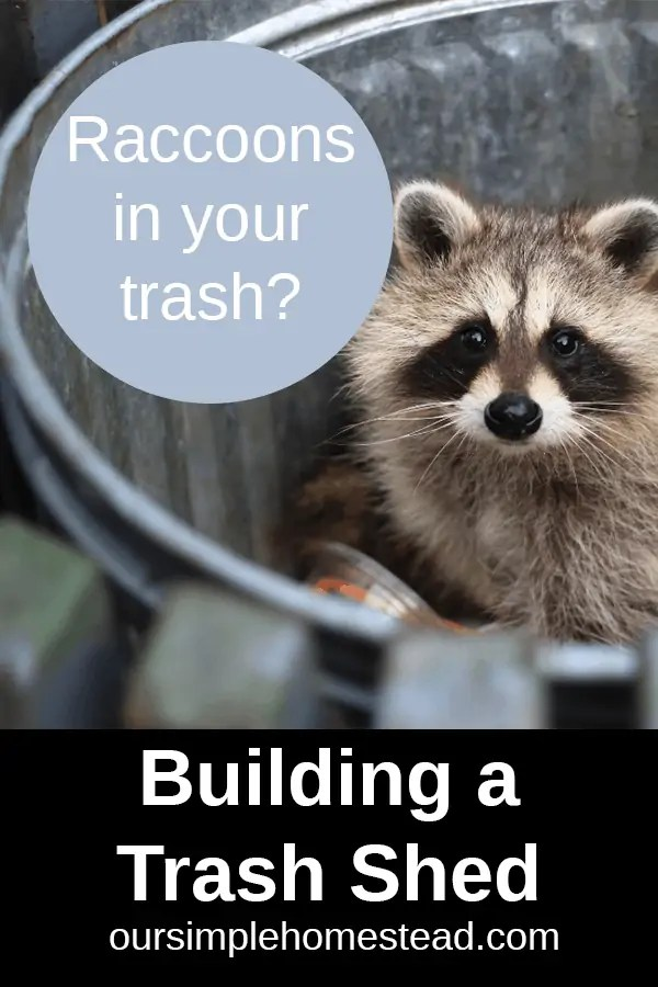keep raccoons out of your trash with a trash shed