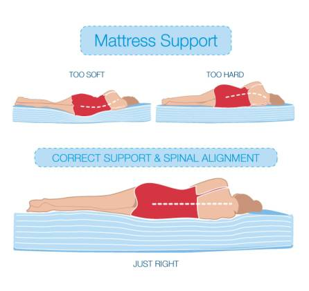 Best Mattress For Side Sleepers Proper Support