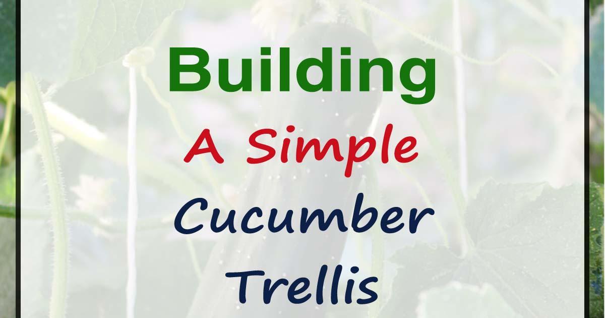 DIY Friday - Simple Cucumber Trellis - Our Stoney Acres
