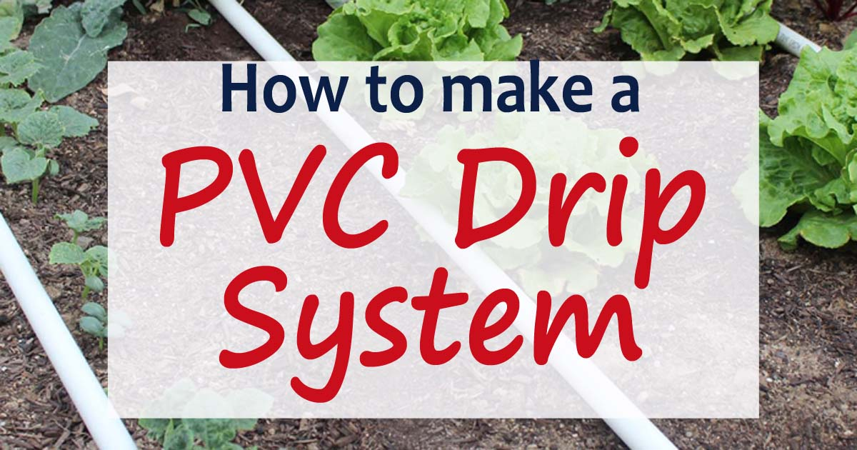 PVC Drip Irrigation System for your garden - Our Stoney Acres Raised Garden Irrigation Design on gravity flow irrigation, vertical garden irrigation, large garden irrigation, home irrigation, tomato irrigation, diy garden irrigation, pvc irrigation, tree irrigation, garden soaker hose irrigation, raised spa, water irrigation, square foot gardening irrigation, raised bed cover system, rainwater garden irrigation, raised planter beds, small garden irrigation, rain barrel irrigation, solar irrigation, small orchard irrigation, garden with irrigation,
