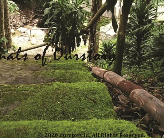 Lingkungan Hidup di Curug Lima Gunung Salak