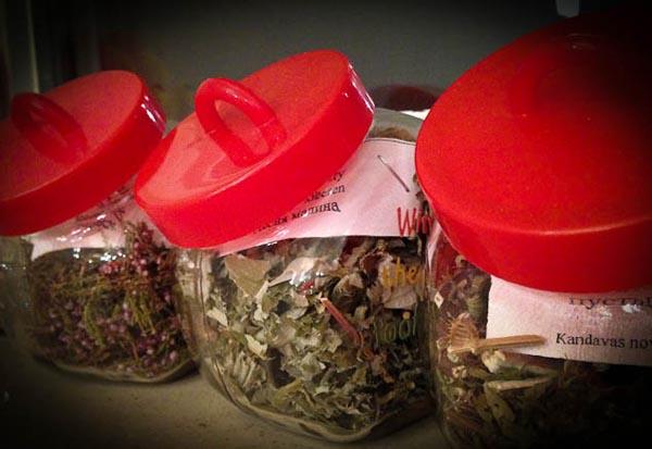 Herbal teas from Latvia