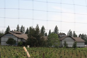 Lave Cap Winery