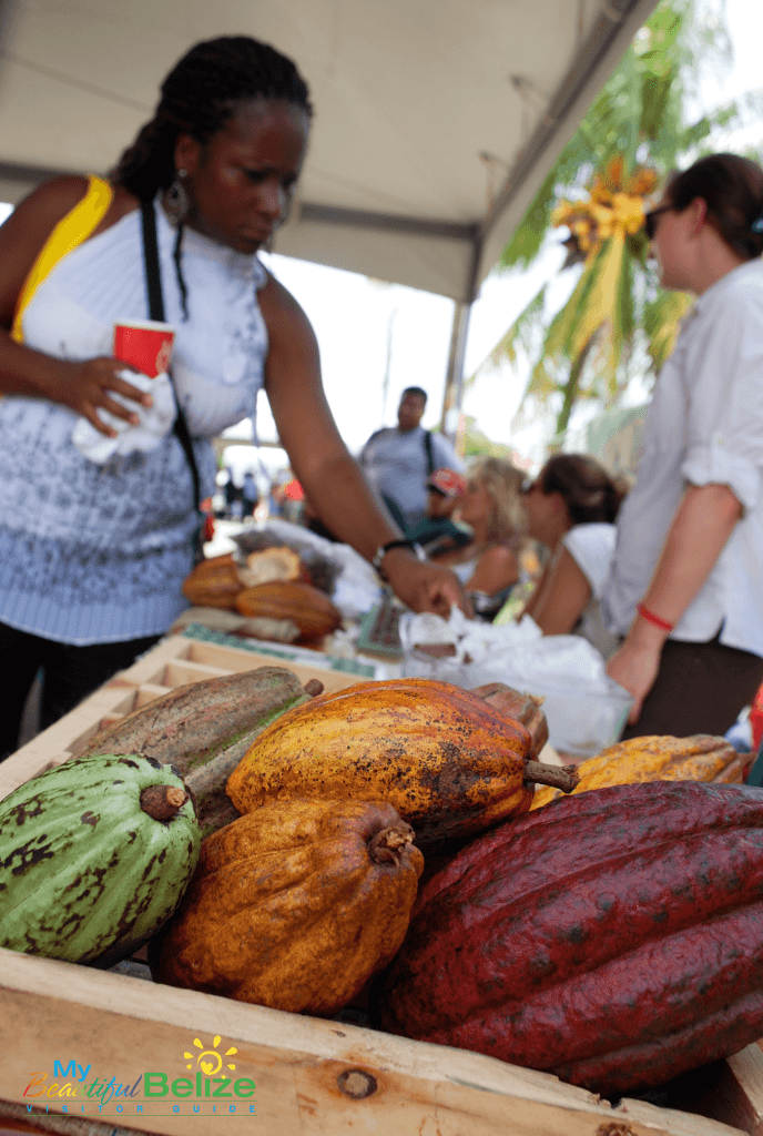 Cacao at the Chocolate Festival of Belize - Photo Courtesy of My Beautiful Belize