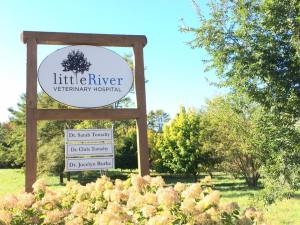 Little-River-Veterinary-Hospital-Belfast-Maine-03