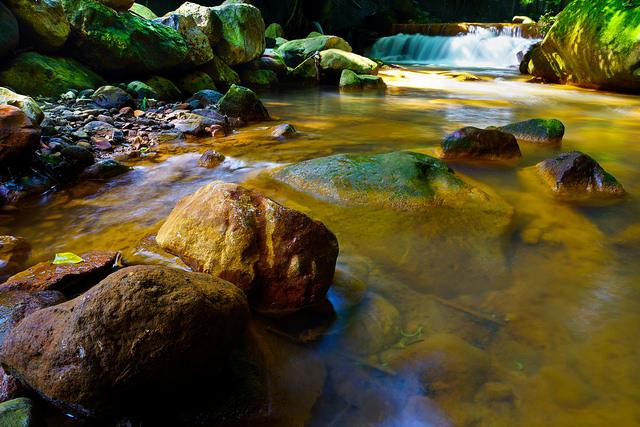 [台北|攝影景點] 台北最簡單抵達的溪流攝影點,金黃錯綜,天母磺溪