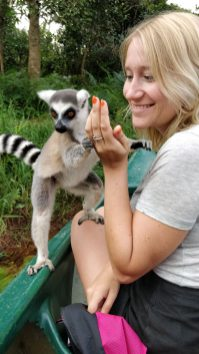 Madagaskar National Park Lemurs 2