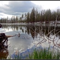 Reflections in the Lily Pond- Lassen Volcanic National Park
