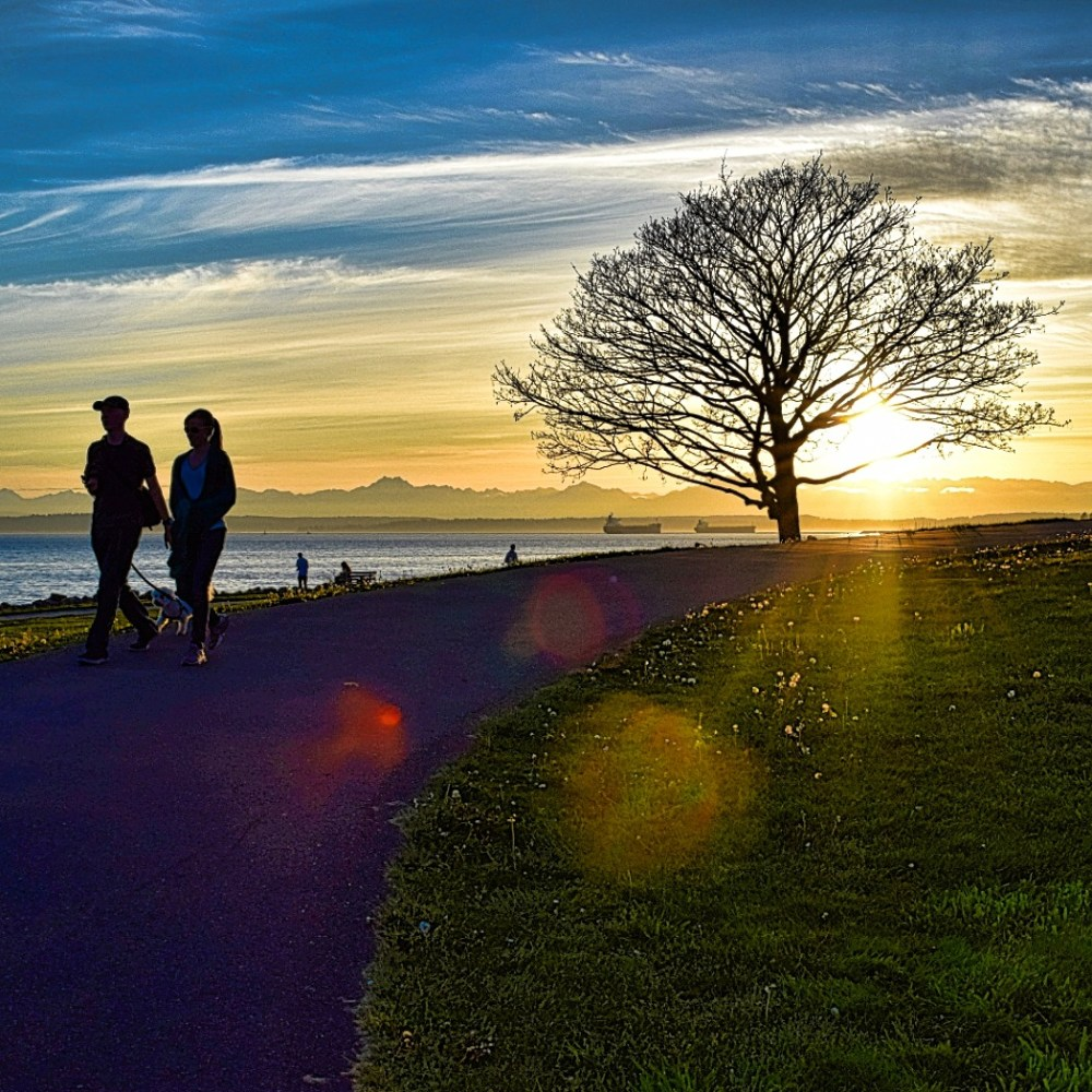 People out for an evening walk with their dog through Seattle's Centennial Park at sunset