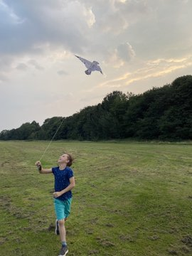Kite flying on Turn Moss