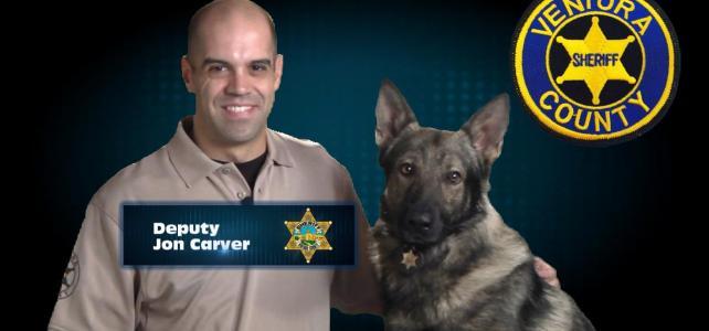 A Happy Police Dog (45sec)
