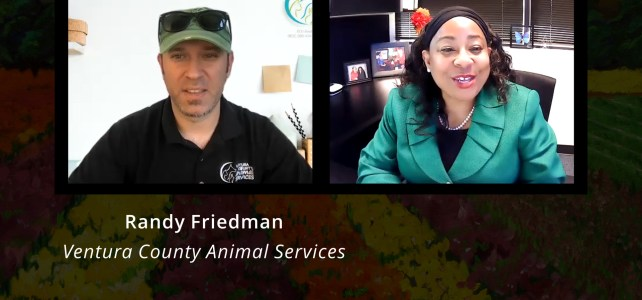 Randy Friedman, Ventura County Animal Services