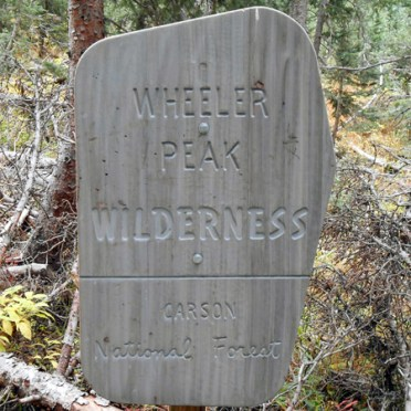 Besides the Lake Williams trail, hikers could take a branch up to Wheeler Peak, New Mexico's highest elevation at 13,167 ft.