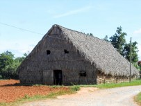 A typical tobacco drying barn thatched with palm leaves.