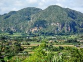 In Vinales Valley, the mountains thrust upward in heaps.