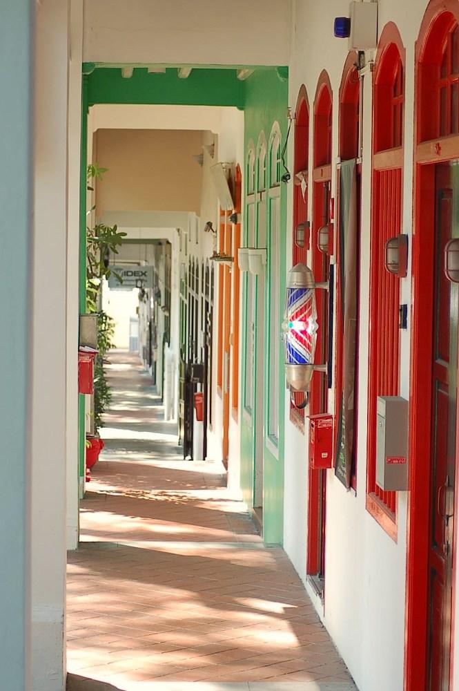 Peranakan Houses of Singapore (6/6)