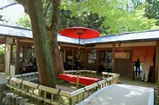 Nanaijaya, a traditional tea room