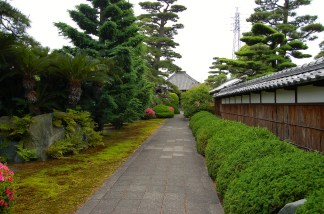 Ryutan-ji Temple is known for these pine trees
