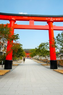 The main torii gate that leads you to the entrance