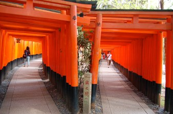 Senbon torii (thousands of torii gates) two dense parallel rows of gates marks the start of the trail
