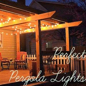 perfect pergola lights