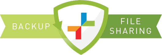 ransomware-securisync
