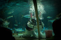 Feeding the fish, Easter-Bunny Style.