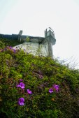 Gladiolus 'Fidelio' grow below the Recreation Yard watch tower