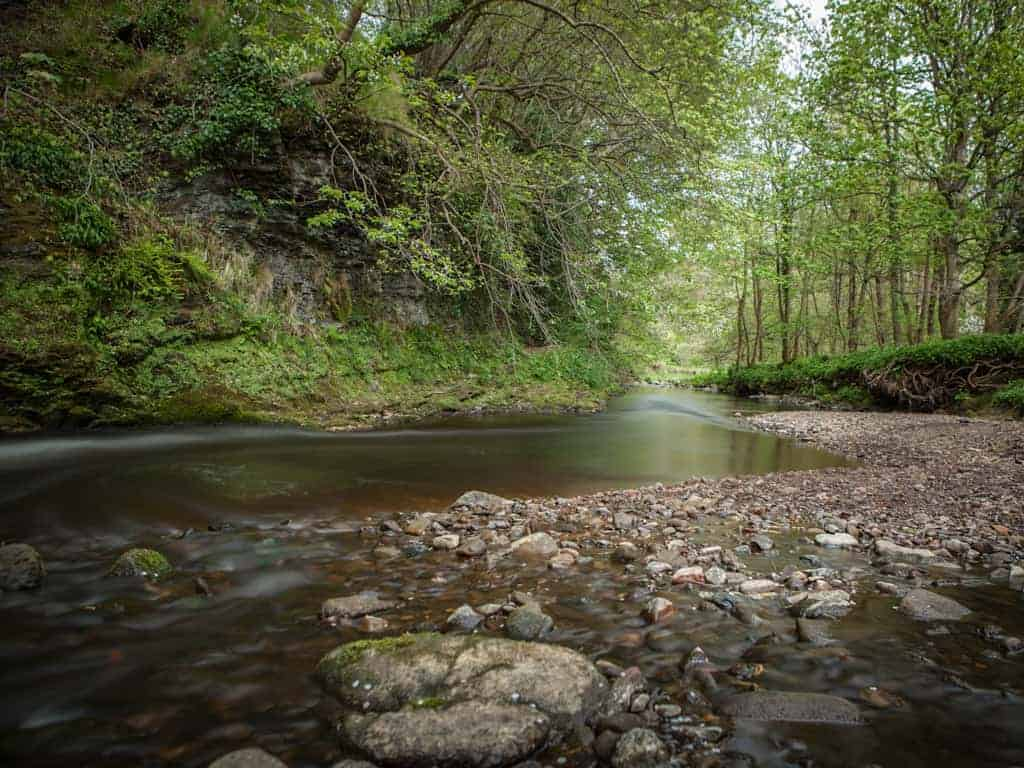 The Water of Leith at Colintion