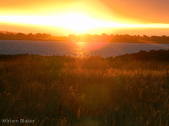 Lake Colac Sunset (800x600)