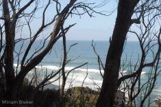View (800x533)