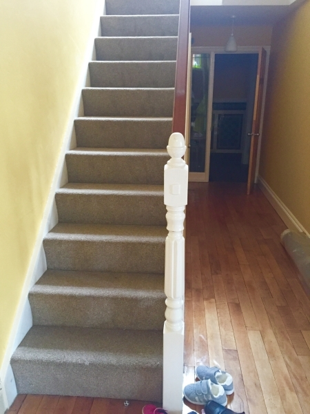 Compact Twist Pile Carpet Out About Carpets   Twist Carpet For Stairs