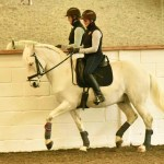 Louise Nice rides advanced horse at TTT's Stephen Clarke and Miguel Ralao seminar