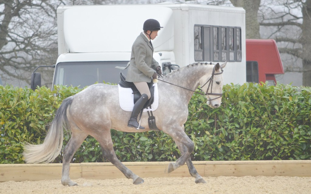 Dressage results: Brendon Stud, West Sussex, 23 May