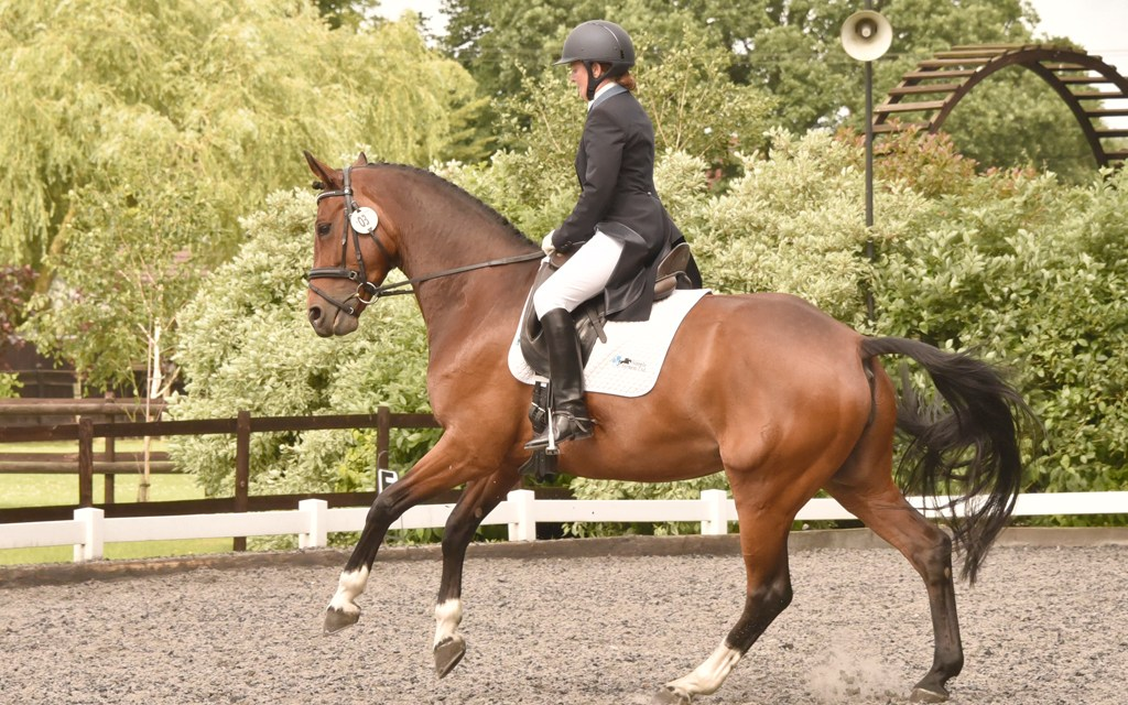 Two move up to advanced level at Oldencraig show
