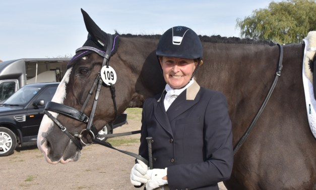Look closer to home for your dressage horse