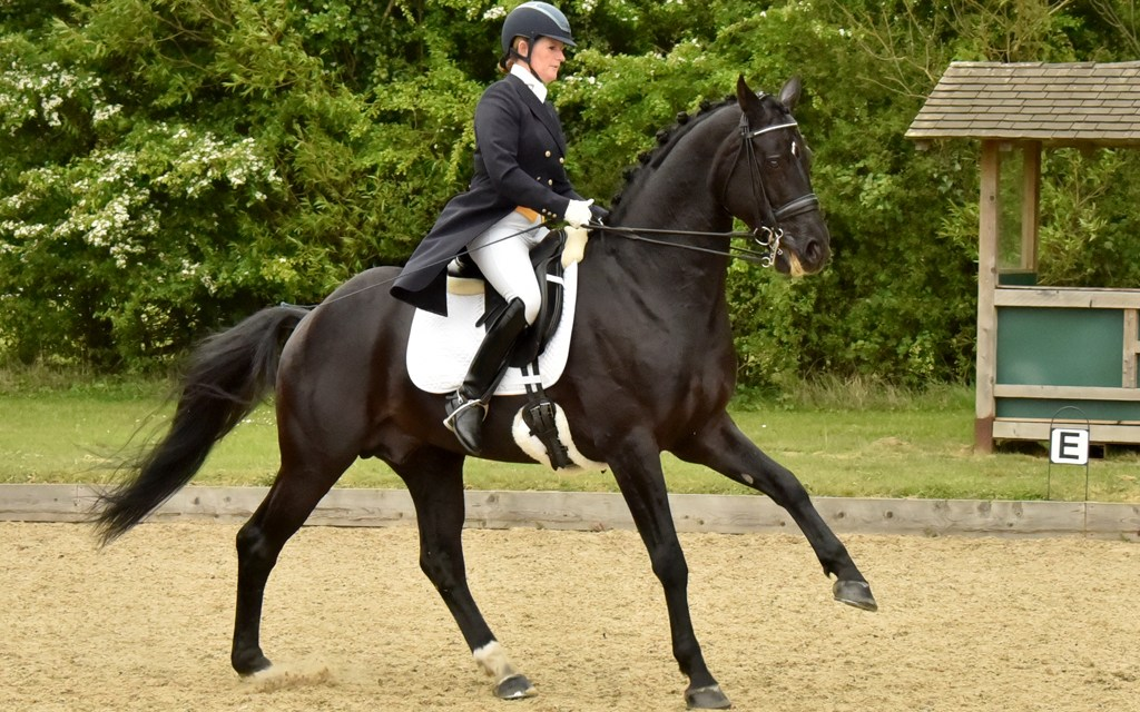 Southern qualifiers line up for Hickstead Dressage Masters Championships