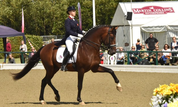Is there a fast track to dressage success?
