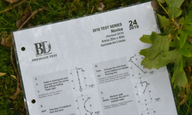 Novice 24: a test of suppleness and adjustability