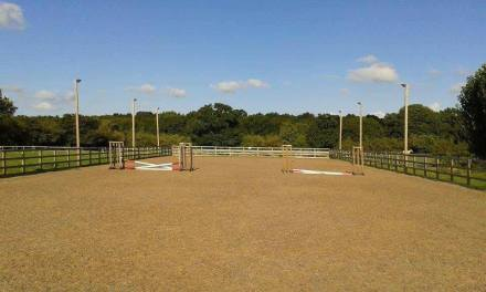 Dressage results: Blue Barn, Kent, 27 December