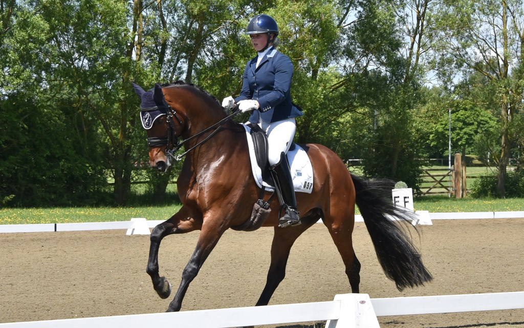 Warmblood rises to the top in Hickstead DM Southern semis