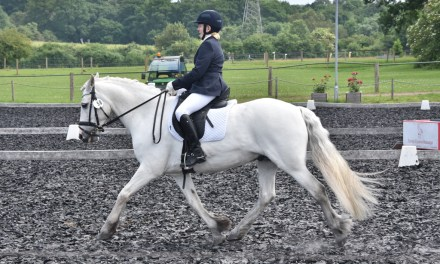 Dressage results: Pachesham, Surrey, 28 July