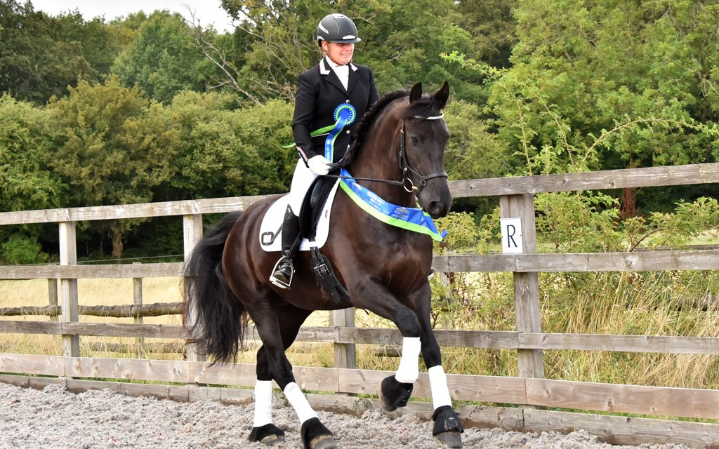 Athena carries off Area Festival Medium sash with Friesian style