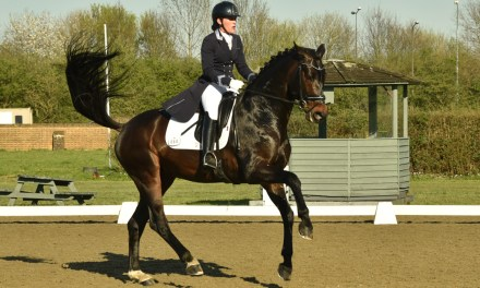 Dressage results: Brendon, West Sussex, 8 September