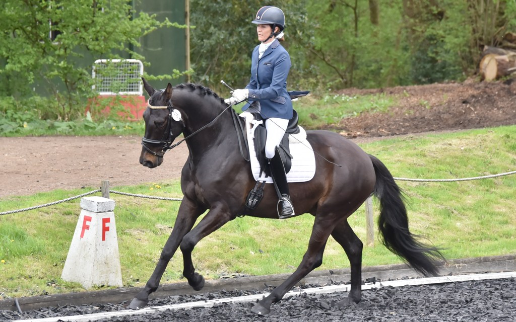 Dressage results: Petley Wood, East Sussex, 4 October